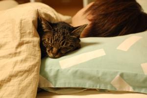 ぐっすり寝るのも健康には欠かせない♪