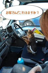みゅうちゃんは運転手さん