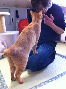 佐山さん、ちゃたと鼻キッスに挑戦!