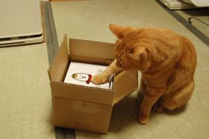 この箱に触る2